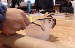 Knowledge Spotlight: Students Learn Human Anatomy Creating Hands in the Makerspace